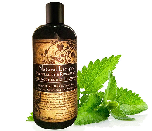 6. Peppermint & Rosemary Strengthening Shampoo