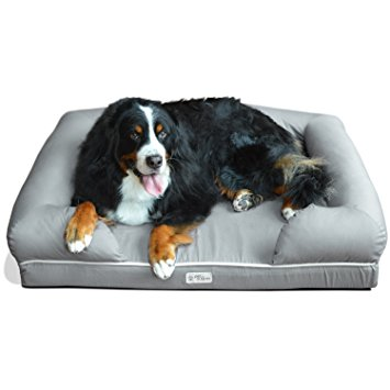 7. Pet Fusion Ultimate Pet Bed & Lounge in Premium Edition with Solid Memory Foam.