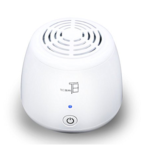 19. TEC.BEAN Ionic Air Purifier