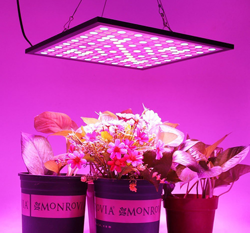10. LED Plant Grow Light Panel