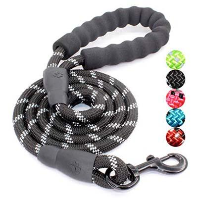 3. BAAPET 5FT Strong Dog Leash