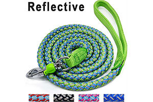 Best Dog Collars for Pulling