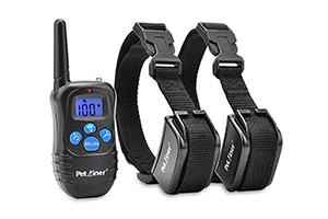 Best Shock Collar for Large Dogs