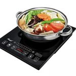 Best Single Burner Hot Plate