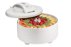 Best Dehydration Machine for Food