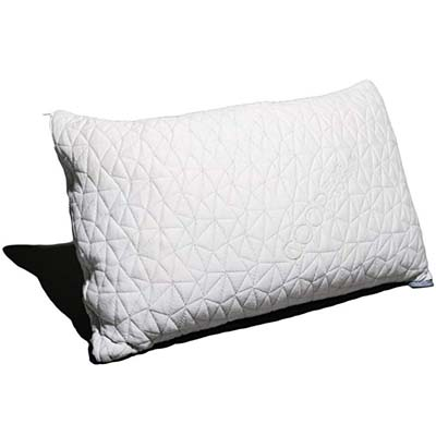 1. Coop Home Goods Pillow