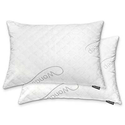 6. WonderSleep Premium Loft Pillow