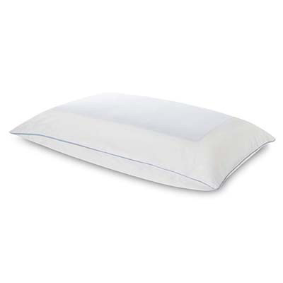 10. Tempur-Pedic Queen Size Pillow