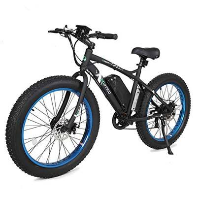 5. ECOTRIC Fat Tire Electric Bike