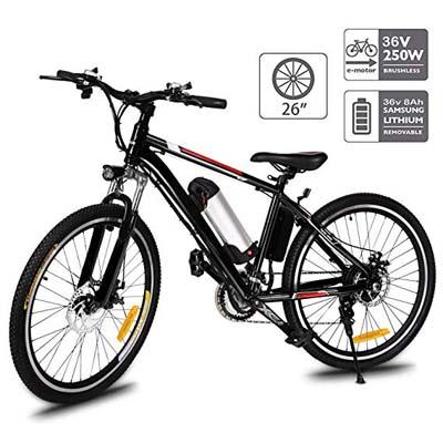 10. Aceshin Electric Mountain Bike